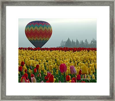 Framed Print featuring the photograph Waiting For Lift Off by Nick  Boren