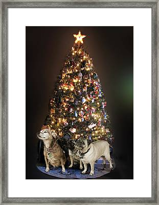 waiting for Santa Framed Print by Marjorie  Smith