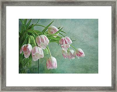 Waiting For Spring Framed Print by Claudia Moeckel