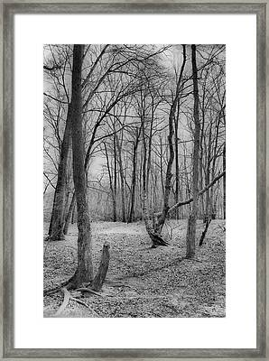 Waiting For Spring Framed Print by Thomas  MacPherson Jr
