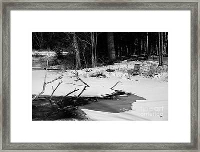 Waiting For Summer Framed Print by Alana Ranney