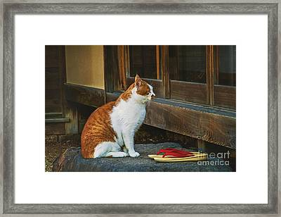 Waiting For Tea Framed Print by Danilo Piccioni