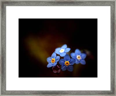 Framed Print featuring the photograph Waiting For The Light by Rachel Mirror