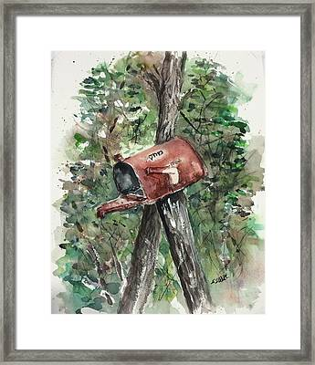 Waiting For The Mail Framed Print by Stephanie Sodel