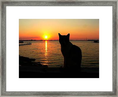 Waiting For The Shrimpers To Come In With Their Catch Framed Print