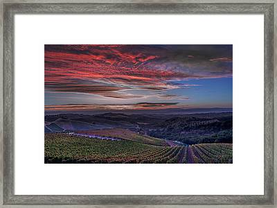 Waiting For The Sun In Adelaida Framed Print