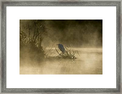 Framed Print featuring the photograph Waiting For The Sun by Steven Sparks