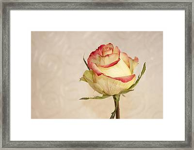 Framed Print featuring the photograph Waiting For The Unfurling by Sandra Foster