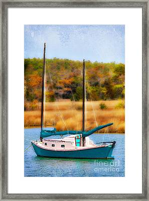 Waiting For Wind - Outer Banks I Framed Print by Dan Carmichael