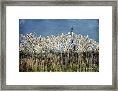 Waiting For You Framed Print by Ellen Cotton