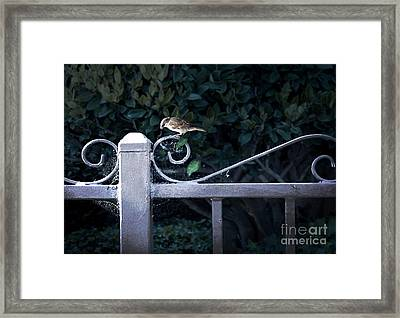 Waiting For Your Call Framed Print by Ellen Cotton
