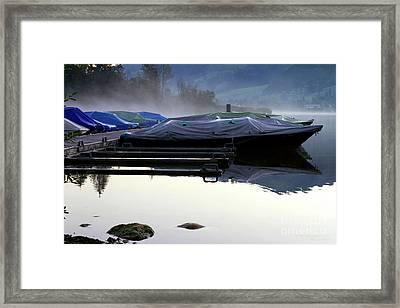 Waiting In Morning Fog Framed Print