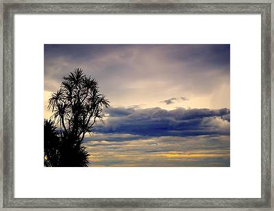 Waiting Framed Print by Marty  Cobcroft