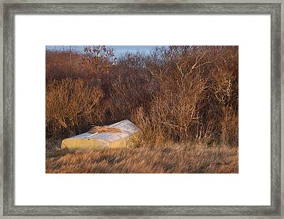 Waiting On Spring Framed Print by Joan Davis