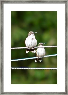 Framed Print featuring the photograph Waiting Our Turn by Nick Kirby