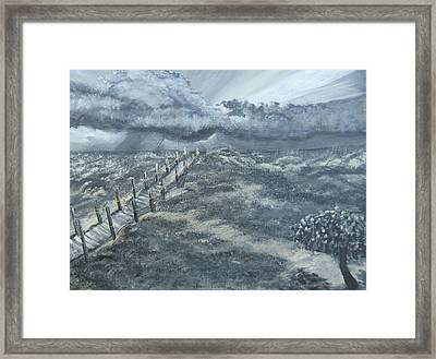 Waiting Out The Storm Framed Print by Katie Adkins