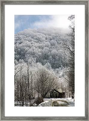 Waiting Out Winter Framed Print by John Haldane