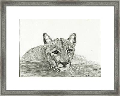 Waiting Patiently Framed Print by Linda Taylor