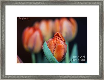 Waitning For The  Spring. 2013. Framed Print by  Andrzej Goszcz