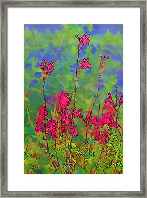 Wake Up Smell The Flowers Framed Print by Linda Phelps