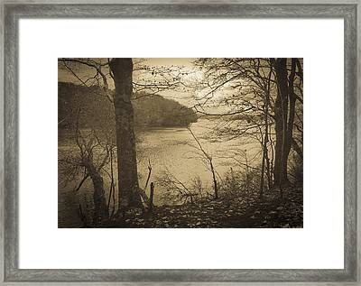 Wakeby Pond Fall 2014 Framed Print by Frank Winters