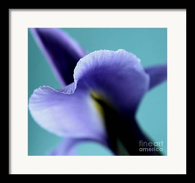 Abstract Iris Framed Prints
