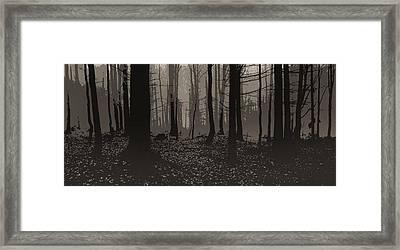 Wald Poster Framed Print by Jaromir Hron