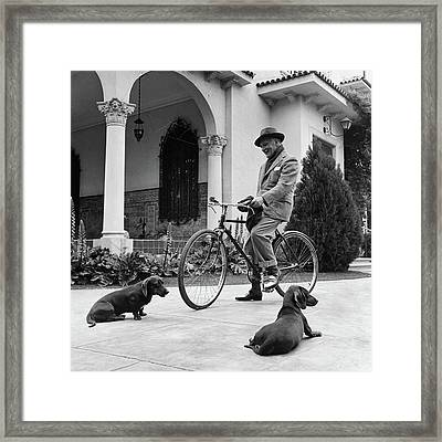 Waldemar Schroder On A Bicycle With Two Dogs Framed Print