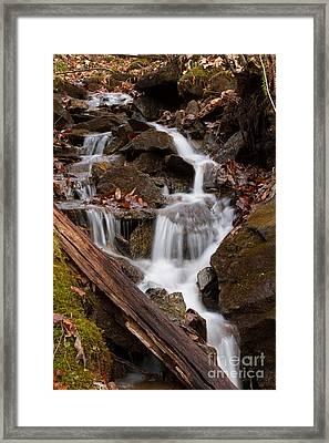 Walden Creek Cascade Framed Print