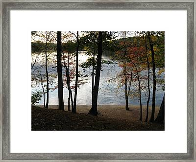 Walden Pond In Autumn Framed Print