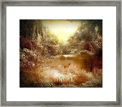 Walden Pond Framed Print by Maggie Vlazny