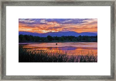 Walden Ponds Sunset Framed Print