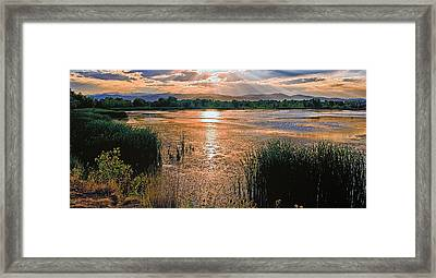 Walden Ponds Sunset II Framed Print