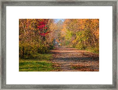 Waling Into Fall Framed Print by Mary Timman