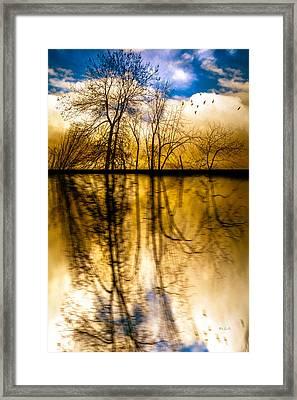 Walk Along The River Framed Print by Bob Orsillo