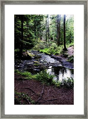 Walk By The Water Framed Print