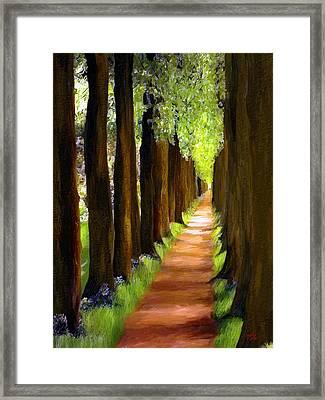 Walk Down The Avenue Framed Print by James Shepherd