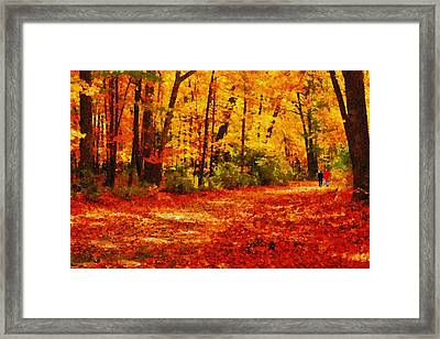 Walk In An Autumn Park Framed Print by Kai Saarto