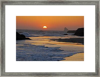 Walk In Gold Framed Print