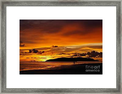 Walk In Paradise  Framed Print