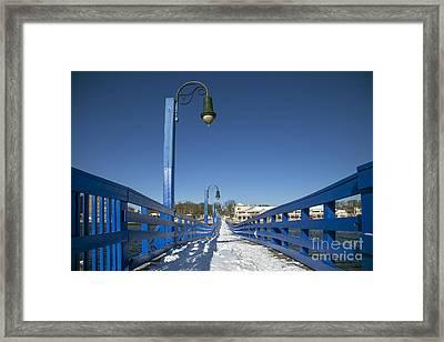 Walk In The Blue Light Framed Print by Evelina Kremsdorf