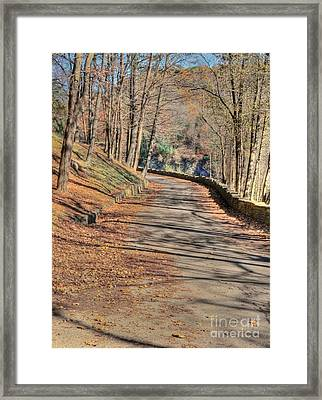 Walk In The Park Framed Print by Kathleen Struckle