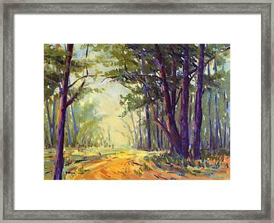 Walk In The Woods 5 Framed Print