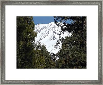 Walk In The Woods Framed Print by Gary Rathjen