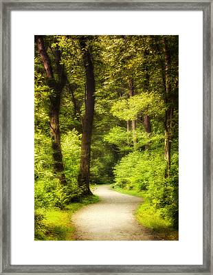 Walk In The Woods Framed Print by Vicki Jauron
