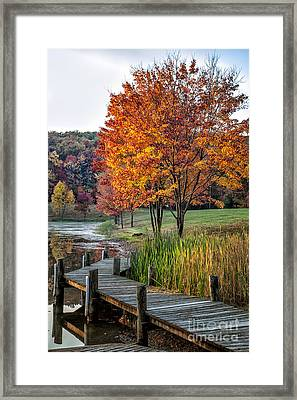 Walk Into Fall Framed Print by Ronald Lutz