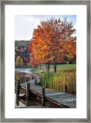 Walk Into Fall Framed Print