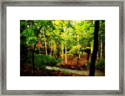 Walk Softly Here Framed Print