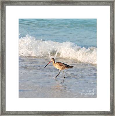 Walk This Way Framed Print by Margie Amberge