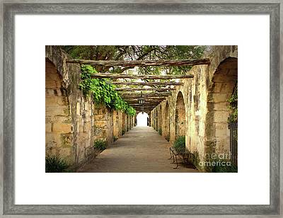 Walk To The Light Framed Print
